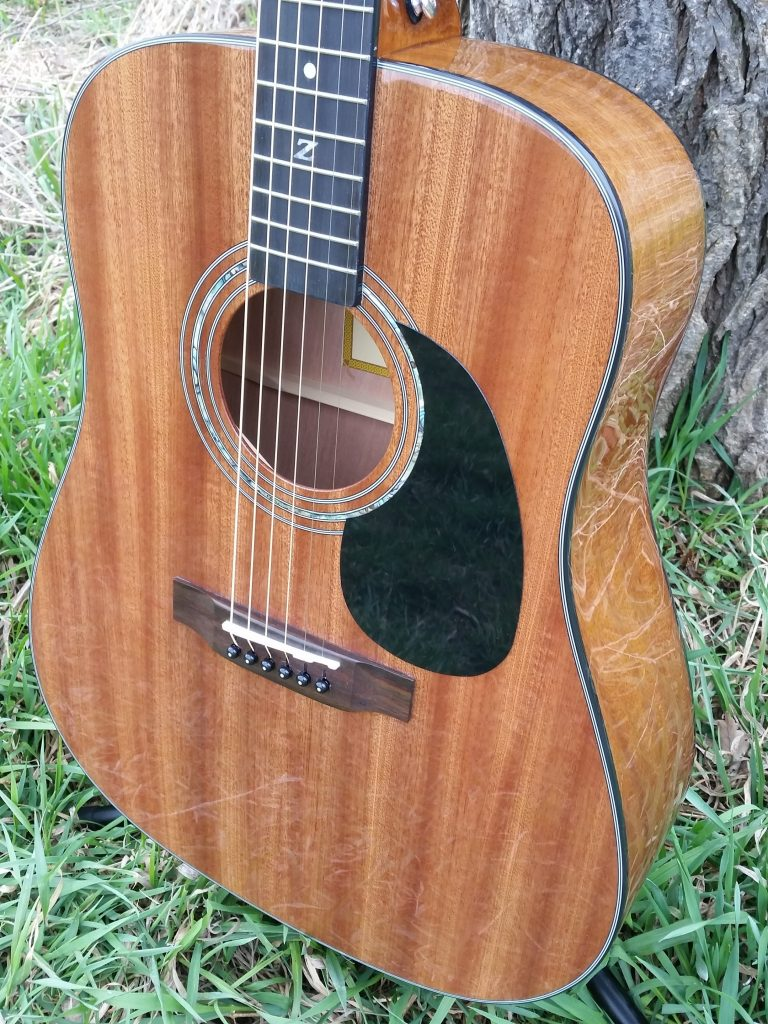 ZAD20 Solid African Mahogany Acoustic (Discount)
