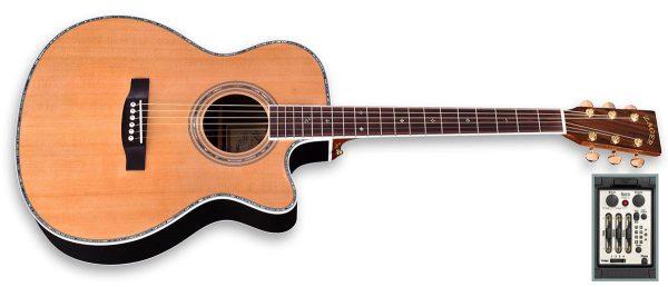 zad900ce aura guitar