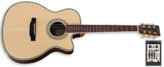 zad900ce acoustic guitar