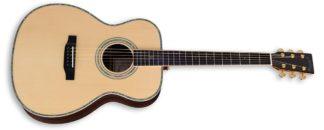 zad900 acoustic guitar