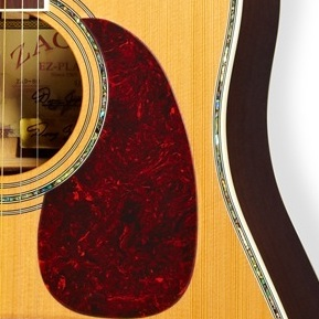 Zager Pick Guard – Tortoise