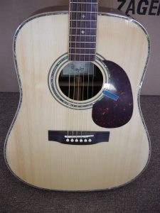 ZAD900 Rosewood/Spruce Acoustic Pro Series (Discount)