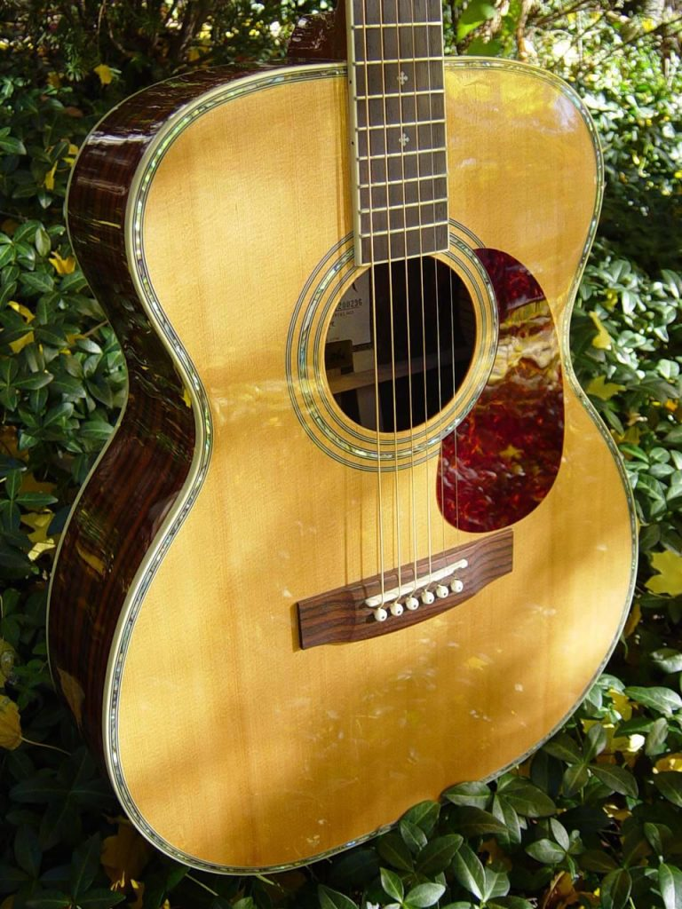 """ZAD80 Rosewood Acoustic Pro Series Smaller """"OM"""" Size (Discount)"""