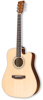 zad50ce special guitar