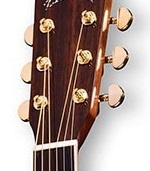indian rosewood headstock