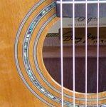 guitar rosette mhgy