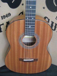 #1797 Parlor-E Acoustic Electric Discount Guitar