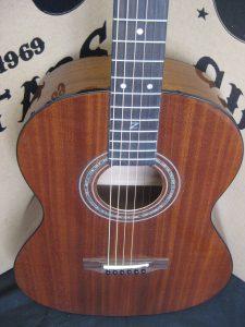 #1890 - Parlor Acoustic Discount Guitar