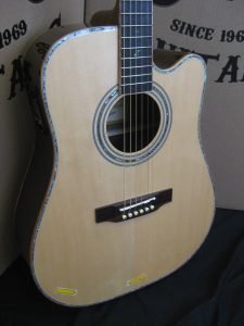 #1917 - 900CE Acoustic Electric Discount Guitar
