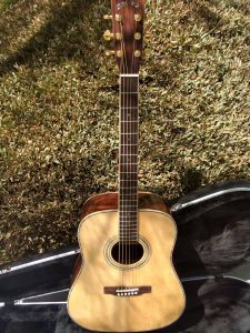 #00047 ZAD900 Rosewood/Spruce Acoustic Pro Series
