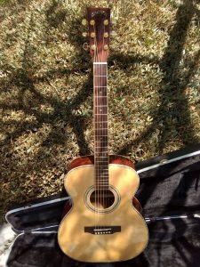 #00046 ZAD900OM Acoustic