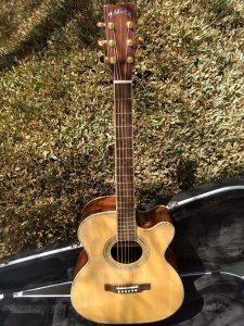 #00062-ZAD900CEOM Rosewood/Spruce Acoustic Electric AURA