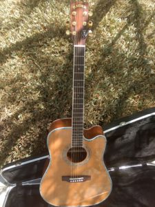 """ZAD80CE Left Handed Solid Cedar/Rosewood Acoustic Electric """"AURA"""" Pro Series"""